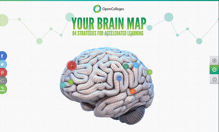 Your Brain Map website