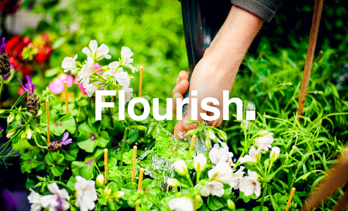 Flourish website