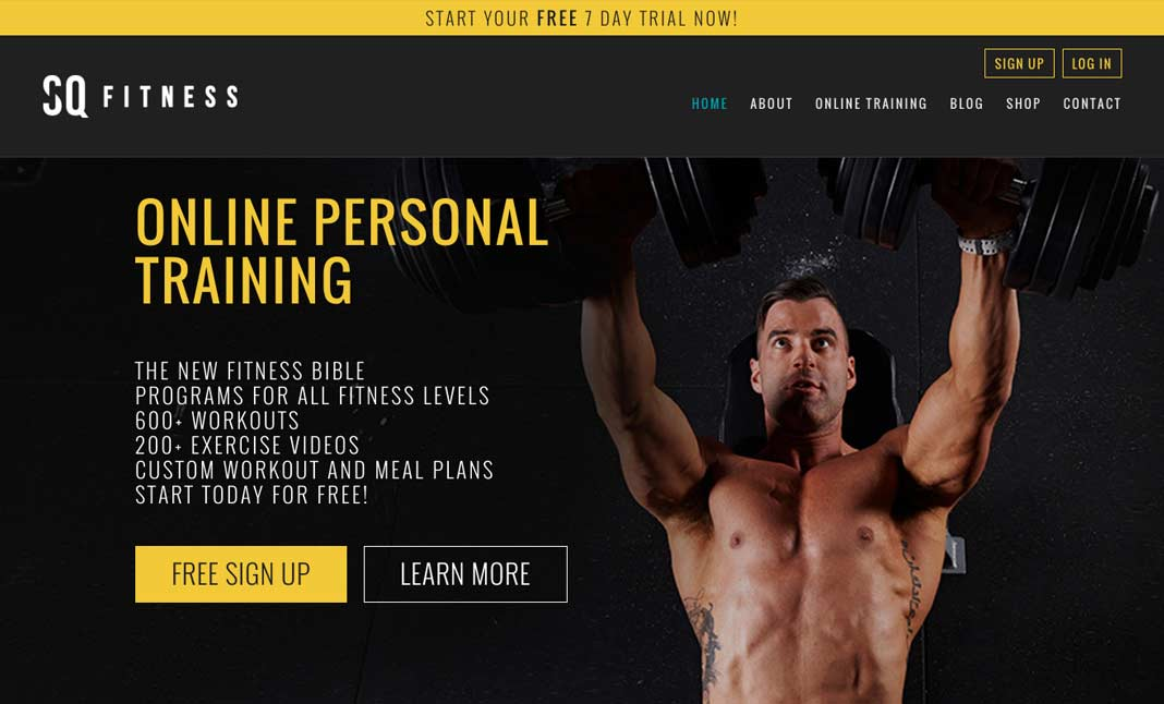 sq fitness designed by ignite online