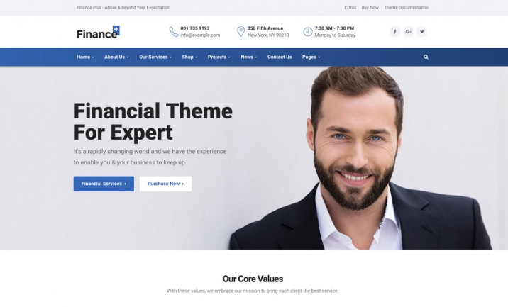 Finance+ WordPress Theme  website