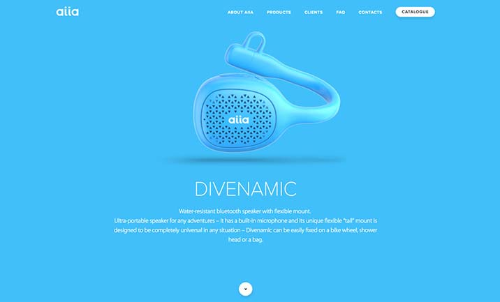 Divenamic website