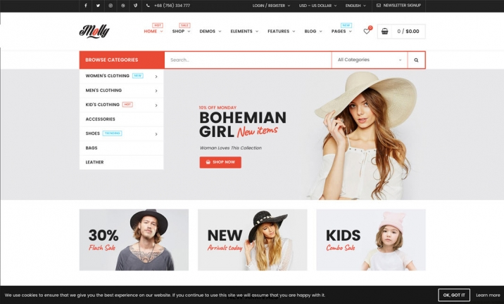 Molly | Top E-Commerce WordPress website