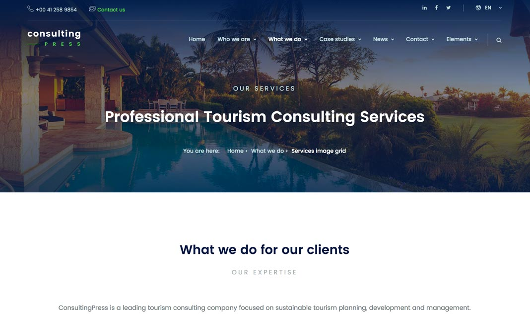 ConsultingPress website