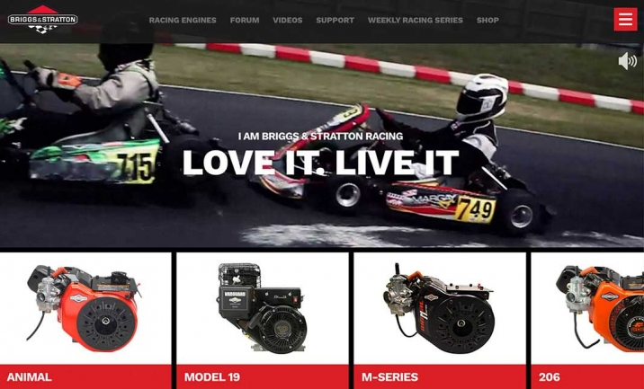 Briggs Racing website