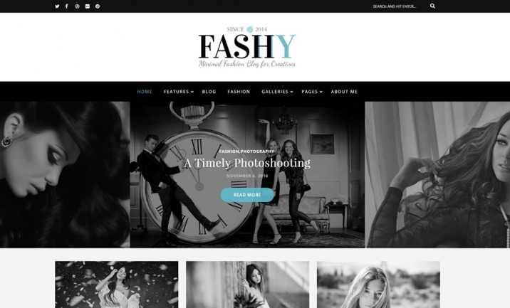 Fashy � WordPress Fashion Blog  website