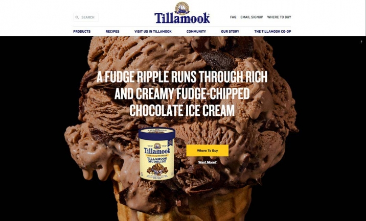 Tillamook Back to Summer website