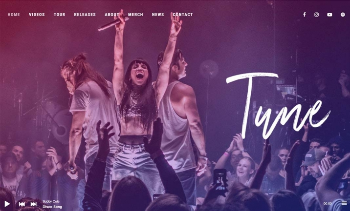 Tune Music WordPress Theme website