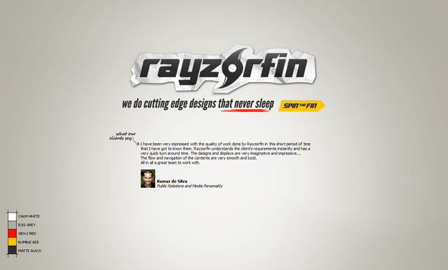 rayzorfin website