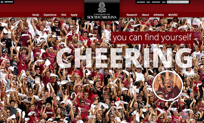 Univ of South Carolina website