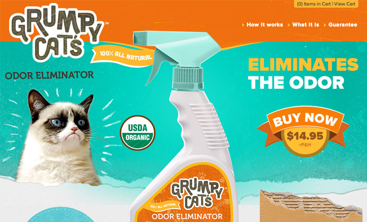 Grumpy Hates Odor website