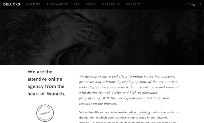 DELUCKS online agency Munich website