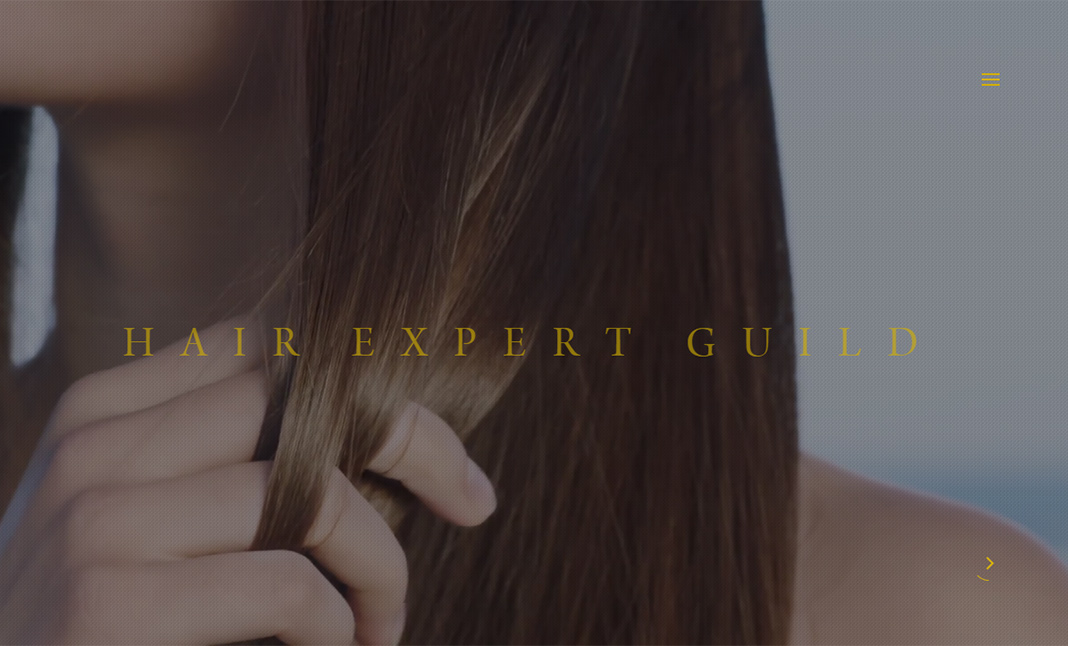 Hair Expert Guild website