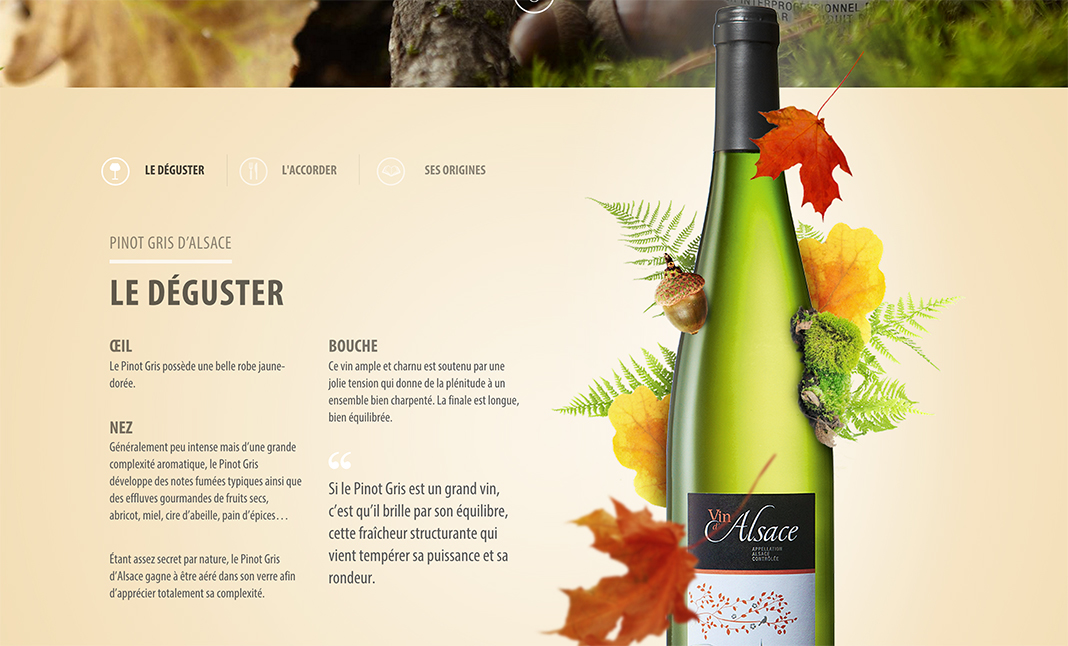 Vins d'Alsace website