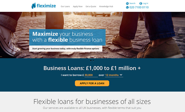 Fleximize website