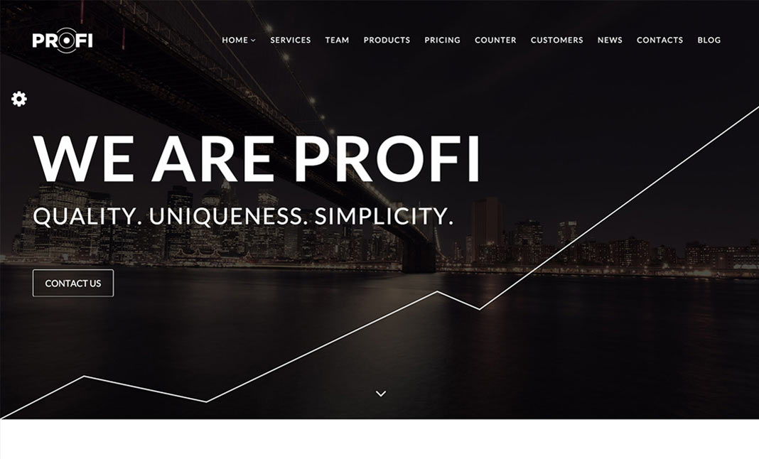 PROFI WordPress Theme website