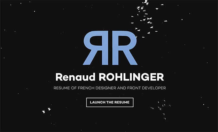 Renaud Rohlinger Resume website