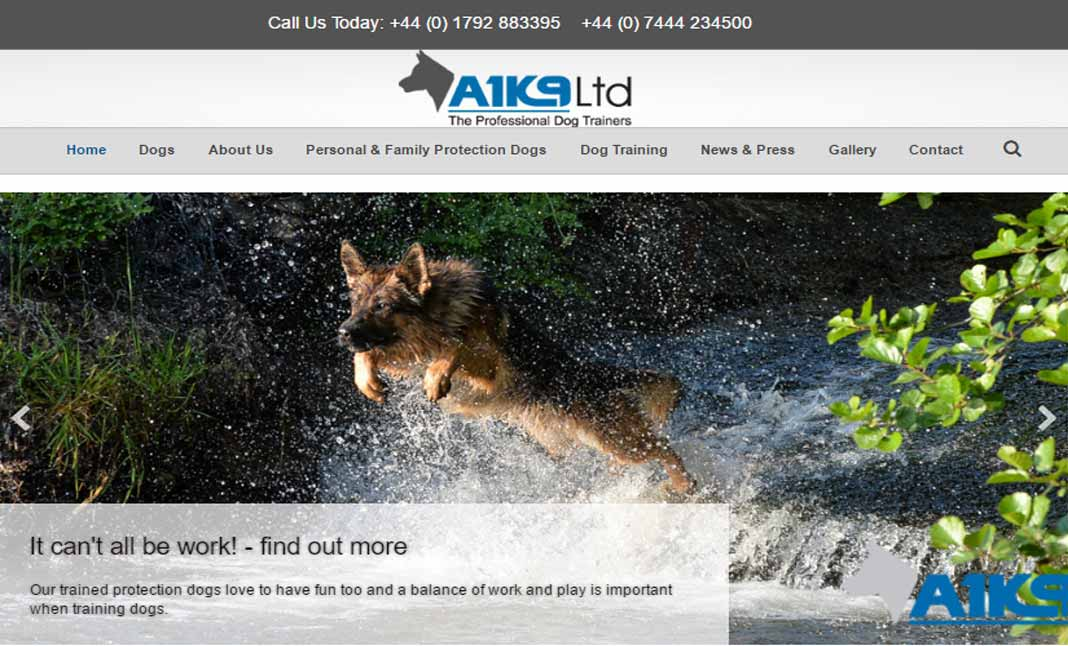 A1K9 Personal Protection Dogs website