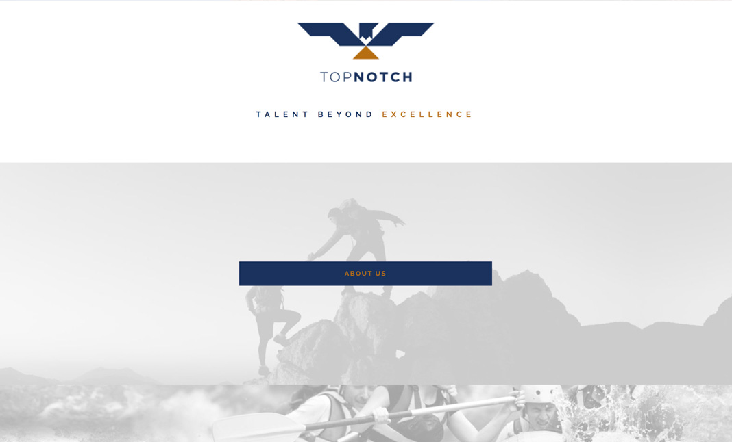 Topnotch Group website