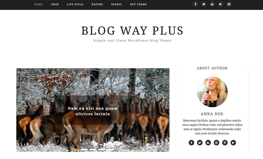 Blog Way Plus website