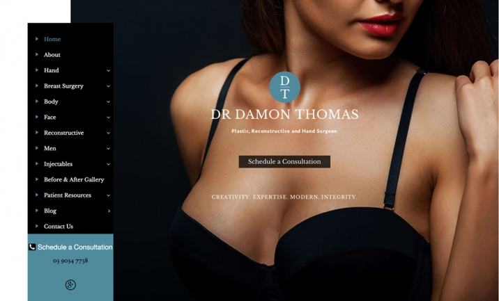 Dr Damon Thomas website