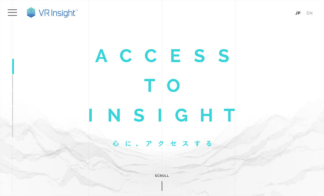 VR Insight™ website