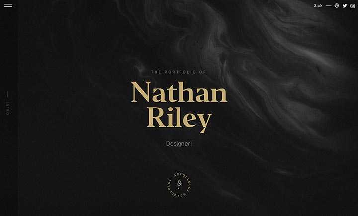 Nathan Riley Portfolio 2017 website