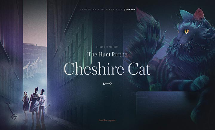 The Hunt for the Cheshire Cat