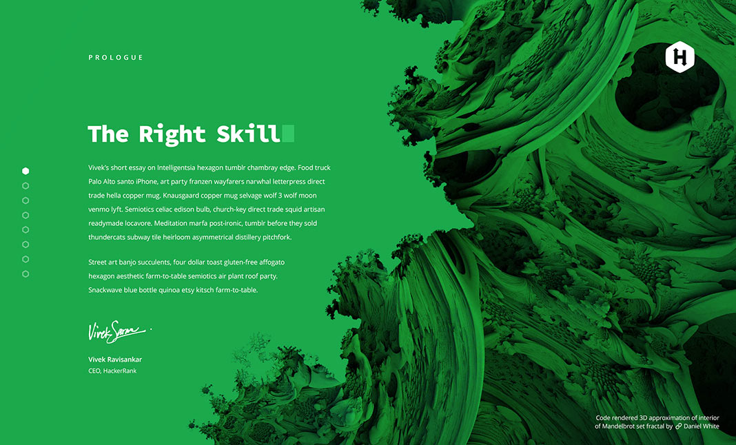 2018 Developer Skill Report designed by HackerRank