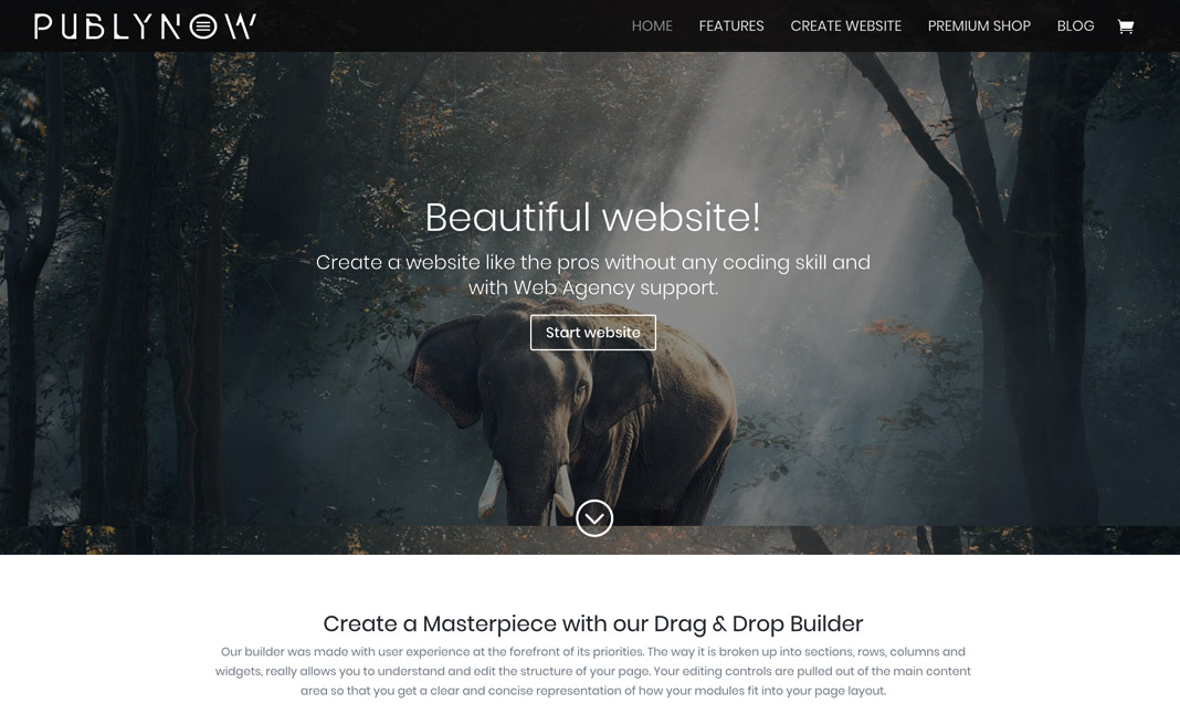 Publynow website