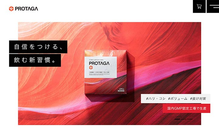 PROTAGA  website