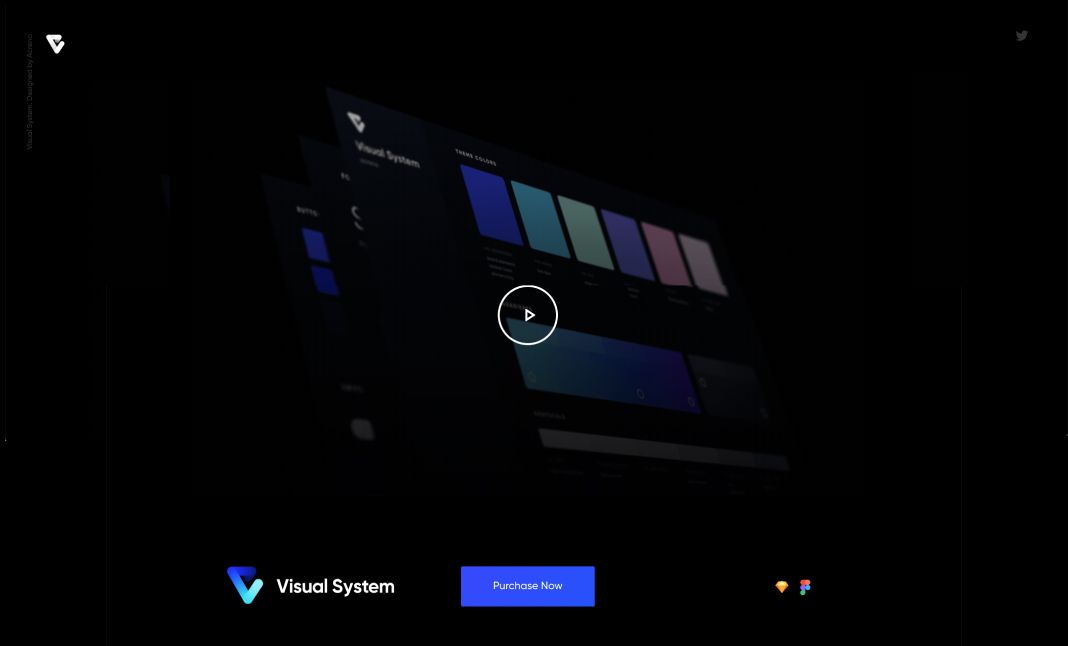 Visual System website