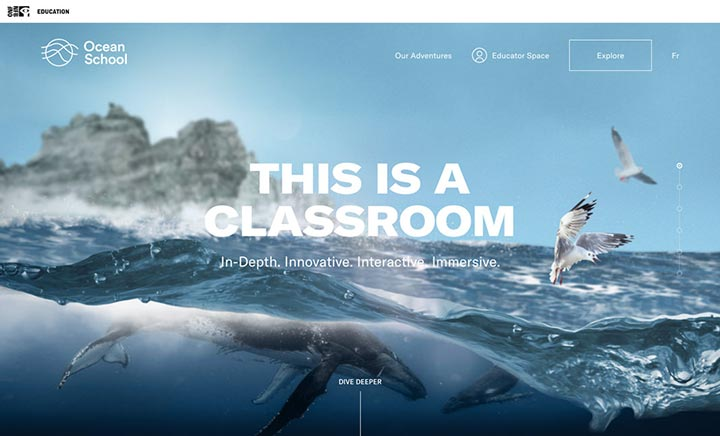 Ocean School website