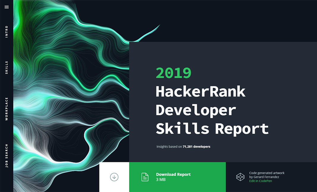 2019 Developer Skills Report website