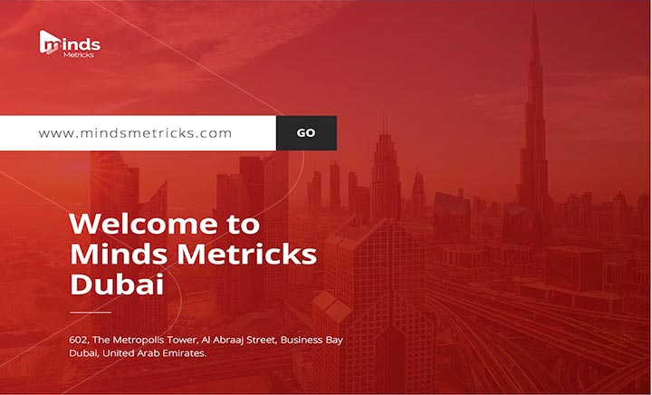 Minds Metricks - Web Design Company website