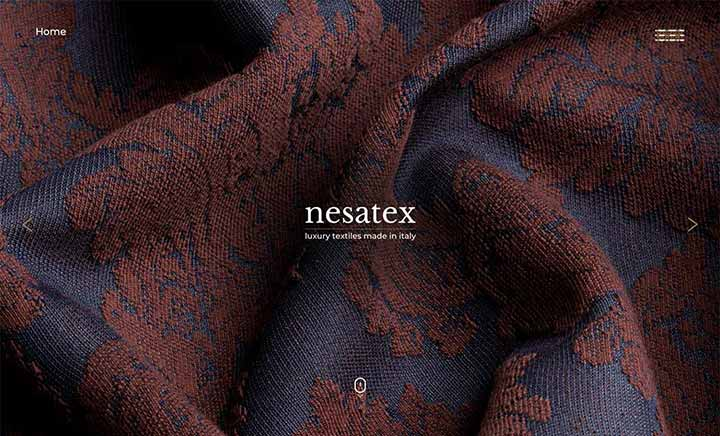 NESATEX website