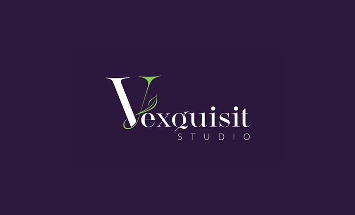 Vexquisit Studio website