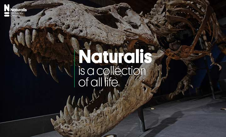 Naturalis website