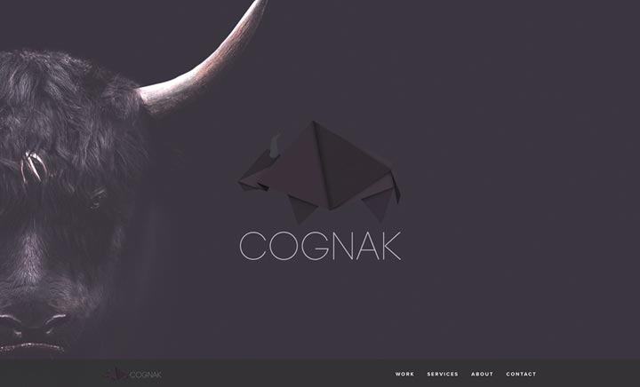 COGNAK website