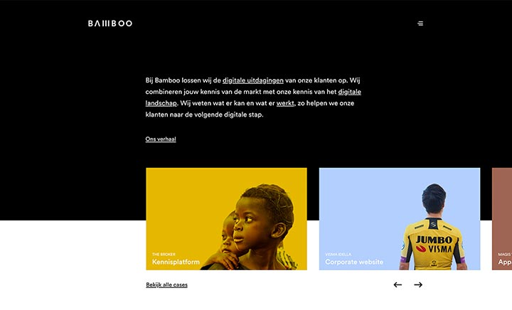 Bamboo website