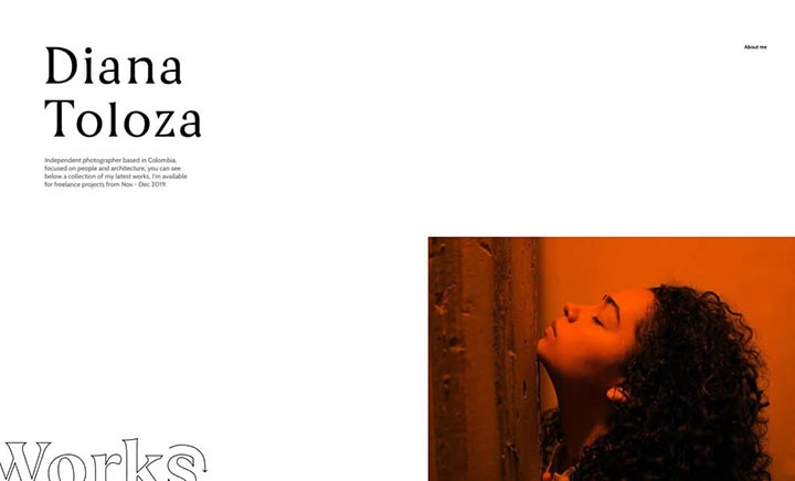 Diana Toloza website