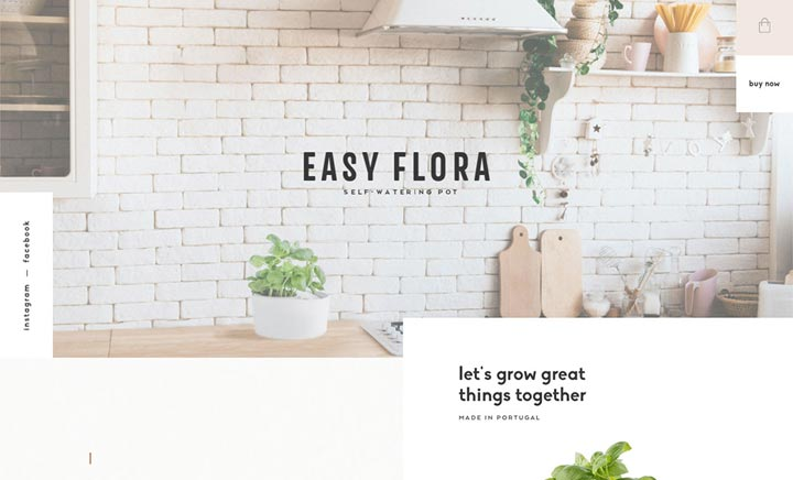 Easy Flora  website