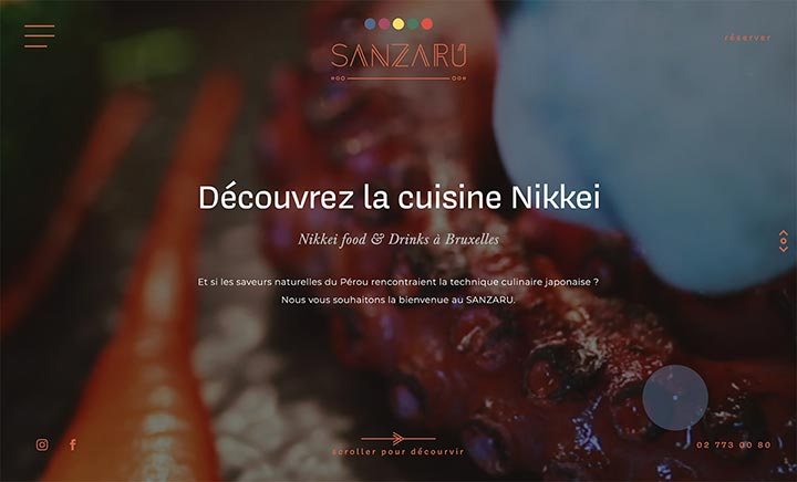 Sanzaru website