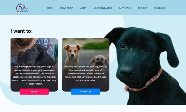 Sponsor a Homeless Dogs website