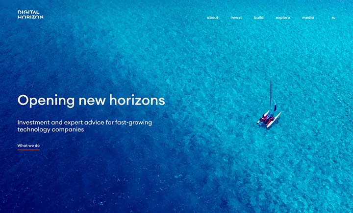 Digital Horizon Ventures website