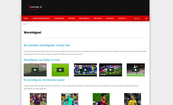 Wereldgoal website