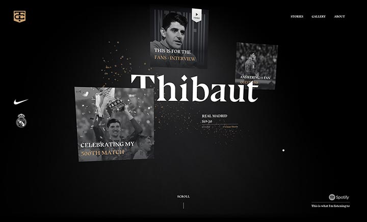 Thibaut Courtois website