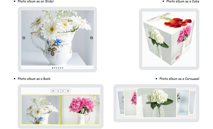 Modern Digital Photo Albums website