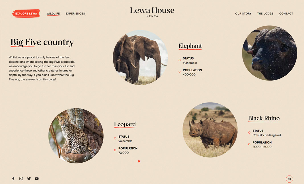 Lewa House  screenshot 2